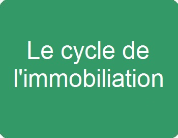 Le cycle de l'immobilisation