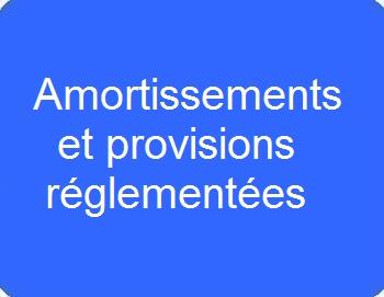 Amortissement et provisions réglementées