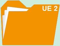 Fiches révision UE 2 : Droit des sociétés et des groupements d'affaires
