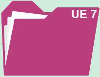 Fiches révision UE 7 : Management