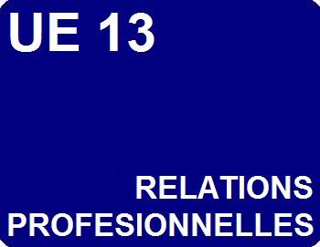 UE 13 : Relations professionnelles