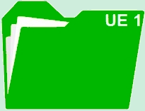 Fiches révision UE 1 : Introduction au droit