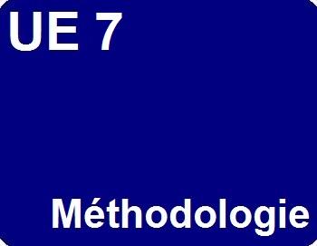 Méthodologie UE 7 : Management