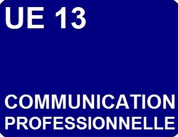 UE 13 : Communication professionnelle