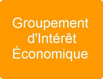 Groupement d'intérêts économiques